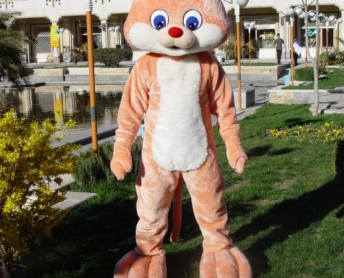 عروسک تن پوش گربه